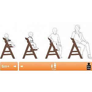 Lesen stolček za hranjenje  ALPHA Walnut