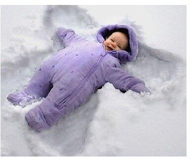 metuljček v snegu